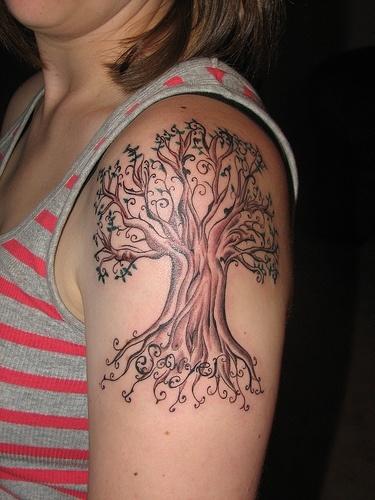 tree-braun