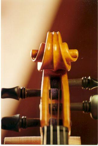 violin-antoniopalomares